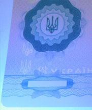 Диплом - свечение УФ (Полтава)